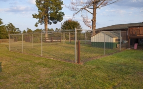 Guildford Horse Farm Dog Pen