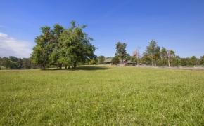 Pleasant Garden Farm 14