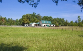 Pleasant Garden Farm 15