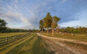 Pleasant Garden Farm 2