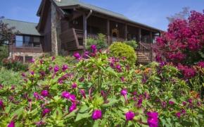 Pleasant Garden Farm 28