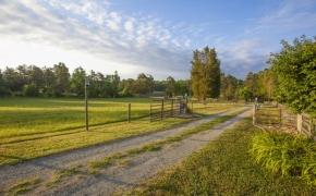 Pleasant Garden Farm 3