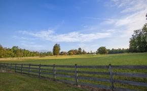 Pleasant Garden Farm 5