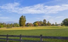 Pleasant Garden Farm 6