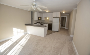 Pulley Town Road Apartment 3