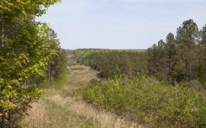 reno-sharpe-store-road-238-acres-19