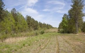 reno-sharpe-store-road-238-acres-7
