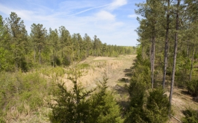 reno-sharpe-store-road-238-acres-main-2