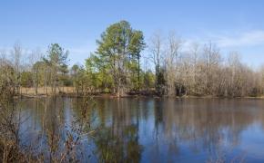 lake-view-4