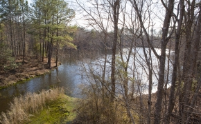 simon-collie-lake-view-6_1