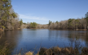 simon-collie-lake