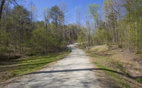 Slade Road 45