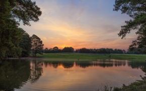 Pond Sunrise 3