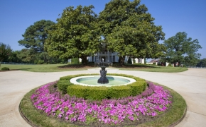 Southern PLantations for Sale 4
