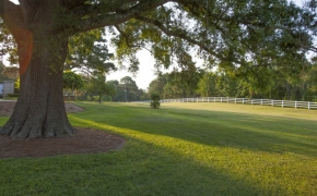 Southern Plantation Grounds