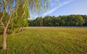 Sunrise Farm Field View