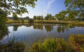 Sunrise Ridge Farm Pond 1