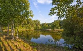 Sunrise Ridge Farm Pond