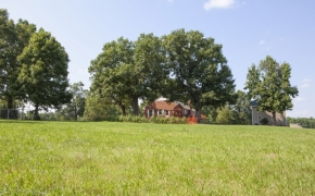 Oxford Farm 20