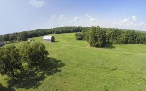Oxford Farm 5