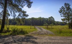 Uzzle-Road-Entry-2