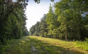 Uzzle-Road-Road-3