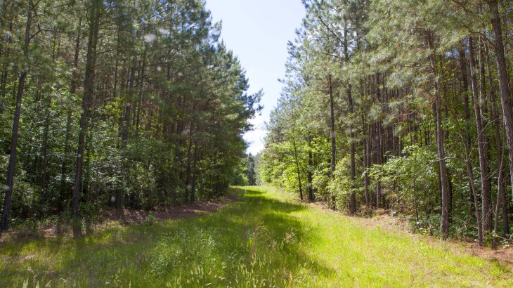 Taylors Gin Road Farm for Sale in NC