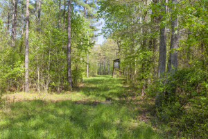 88 Acres on Antioch Road