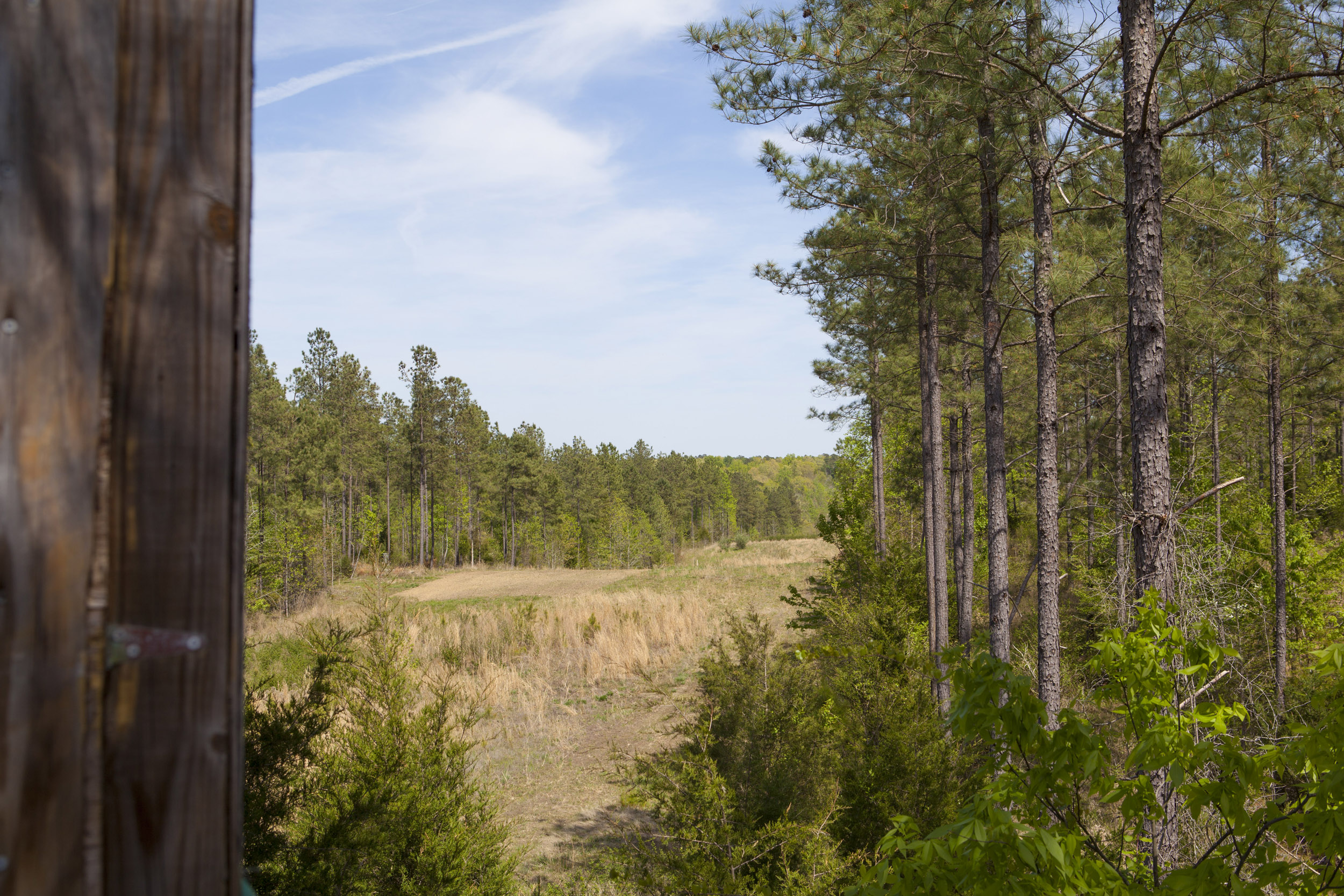 Reno Sharpe Store Road 238 Acres Farm for sale
