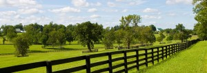 ©Legacy Farms and Ranches
