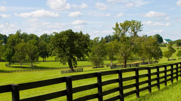 plateau Archives - Legacy Farms and Ranches North Carolina