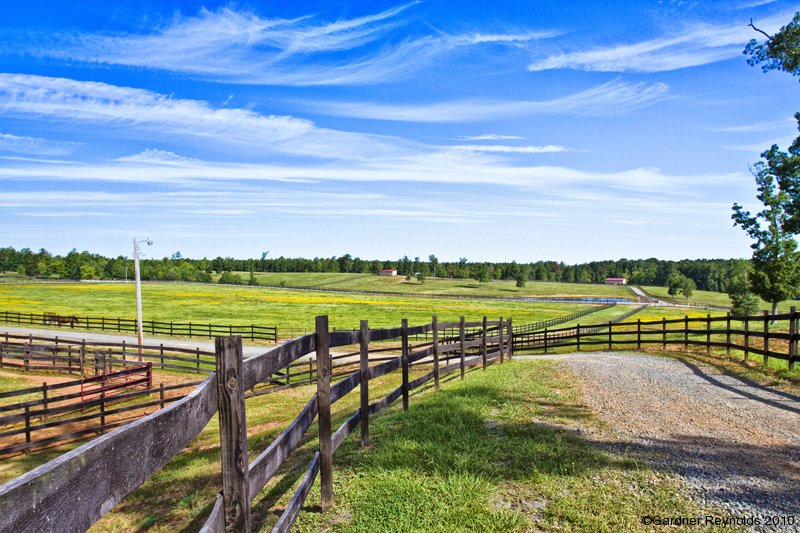 Legacy Farms and Ranches of North Carolina, Land for sale in NC, NC horse farm