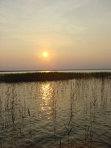 Rural property for sale, hunting land for sale, NC lakefront property