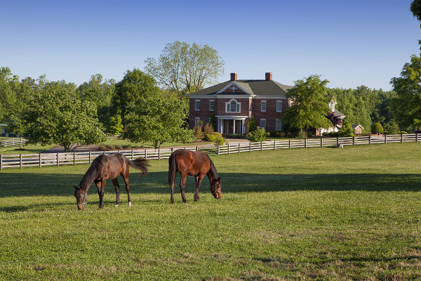 Horse Property Raleigh Nc