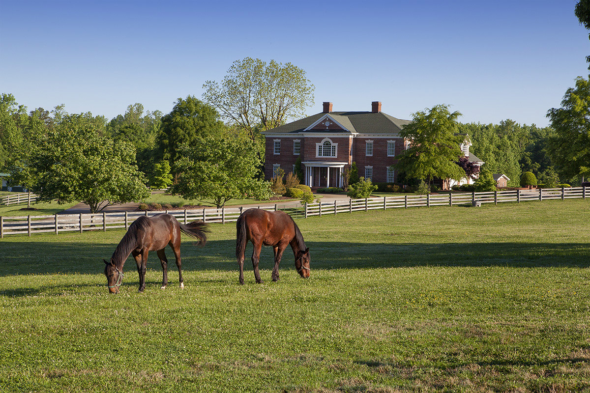 Guilford County Horse Farm For Sale 6875 Bowman Dairy Road