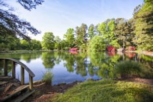 Pond on Creedmoor, NC - Granville County Farm - (c) Gardner Reynolds
