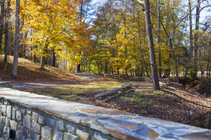 Land for Sale in Wake County - Raleigh Farm and Home