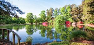 Creedmoor-Ponds