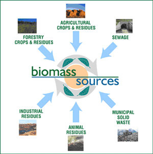 biomass from forestry byproducts