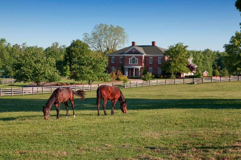 Four Legged Checklist For Successful Horse Farm Buyers In