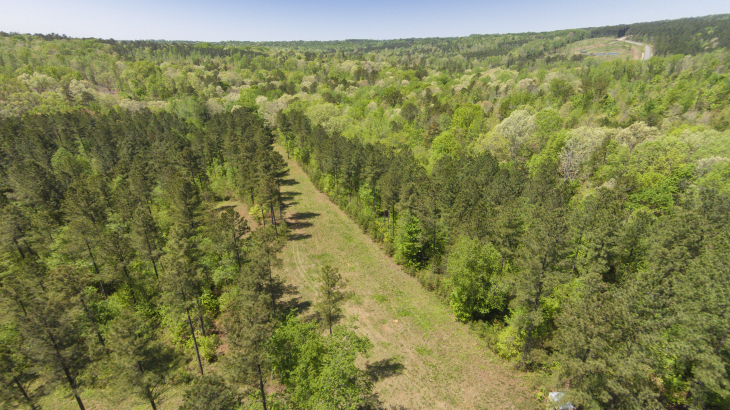 Harnett County 154 Acres and land for sale