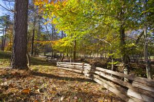 Raleigh, Wake County, North Carolina Land for sale