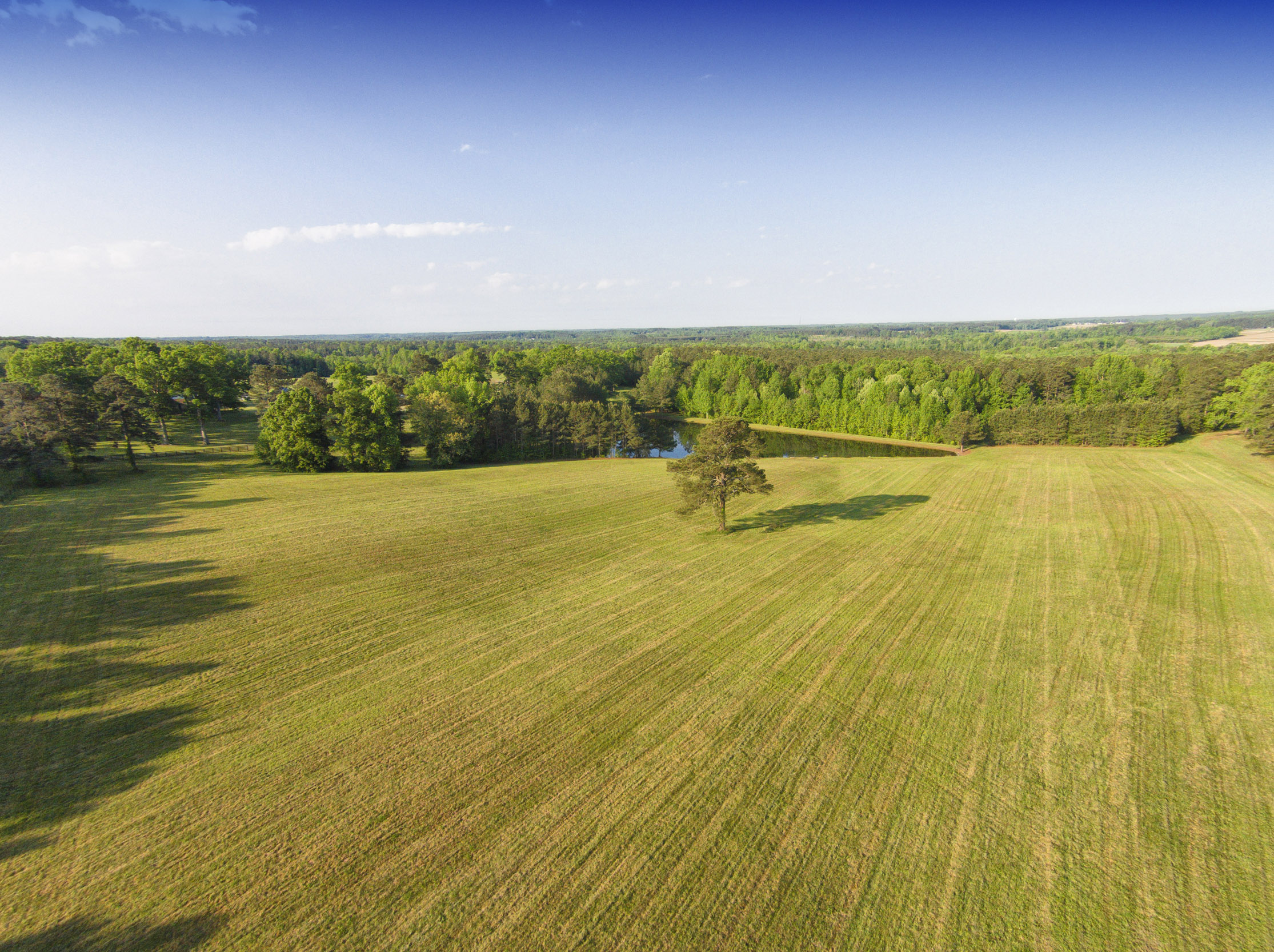 215 Acres for Sale in Louisburg Franklin COunty NC