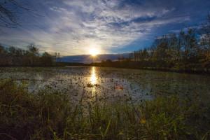 Occoneechee Lake