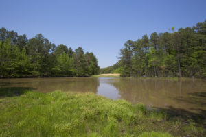 Granville County Farm for Sale with Timber and Pond on Hwy 158 & Cornwall Road