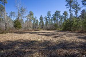 Kearney Land for Sale in Henderson