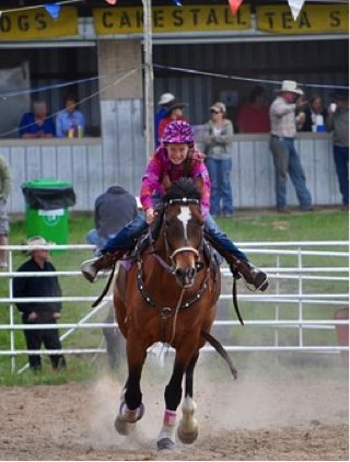 North Carolina Barrel Racing | Legacy Farms and Ranches of NC