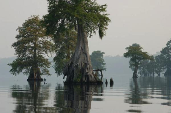 North Carolina's Spookiest Haunts