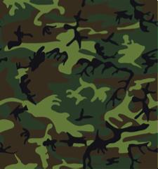 NC Deer Hunting Tips & Tactics