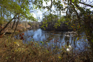 200 Acres for Sale in Harnett County NC